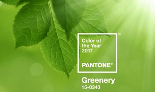 Pantone Color of the Year 2017 - Greenery
