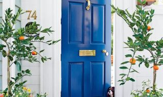 5 Great Ways To Modernise Your Front Door