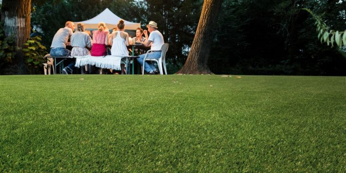 Should You Fake The Grass?