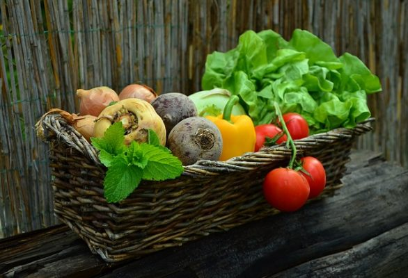 Why You Should Grow Your Own - Vegetables