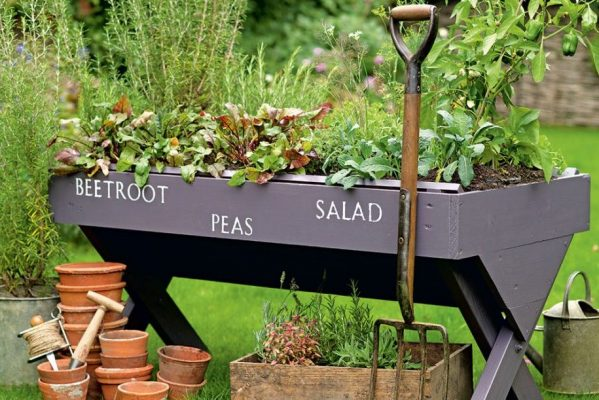 5 Cost-Effective Way To Improve Your Garden - Mini Vegetable Patch - Image Via IdealHome.co.uk - Image Credit Tim Young