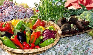 Vegetable Calendar