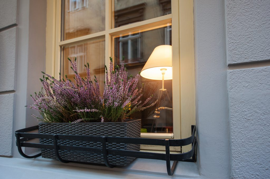 Painted Sash Window With Heather Filled Planter