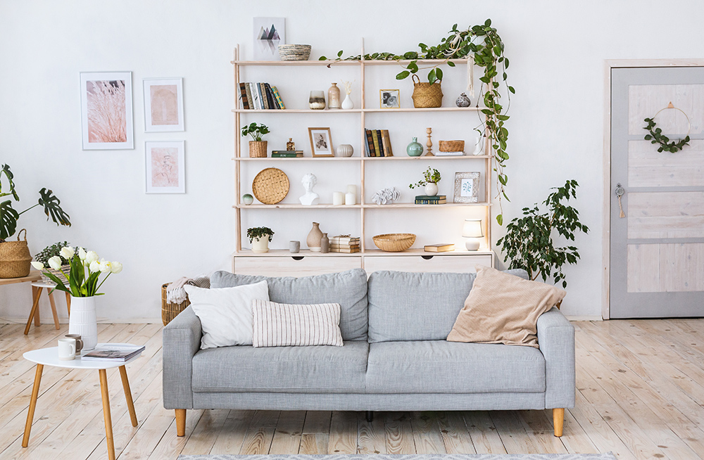 Cosy lounge, grey sofa and plants