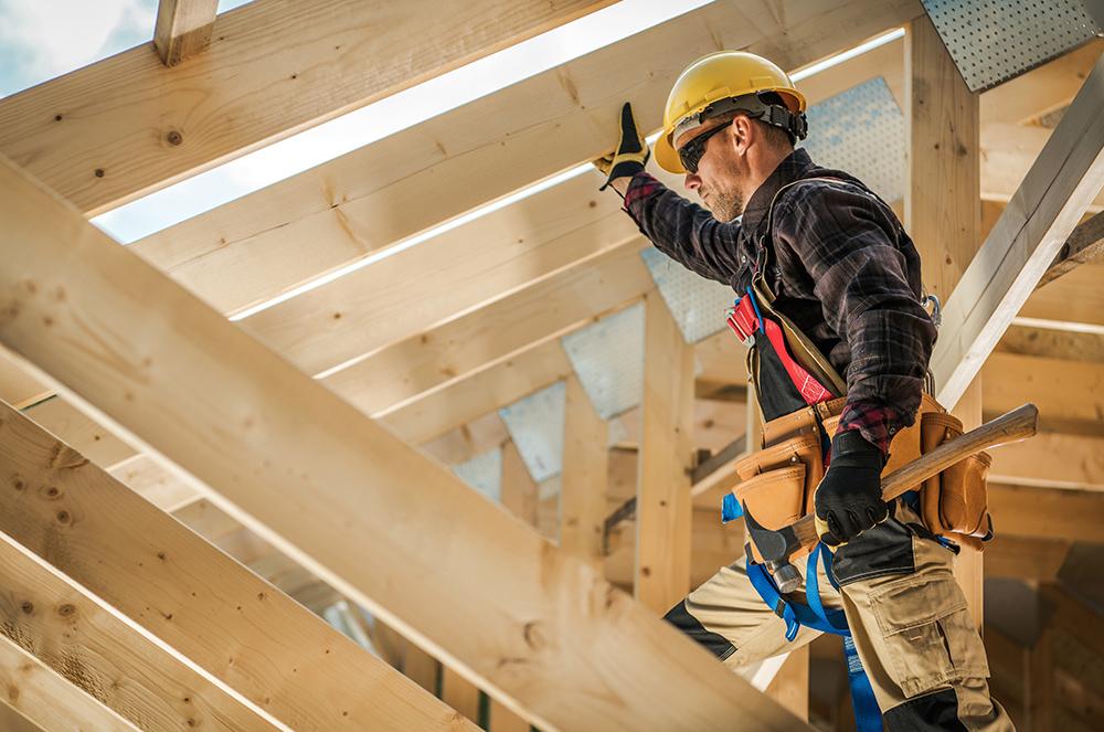 Carpenter, wooden roof contractor