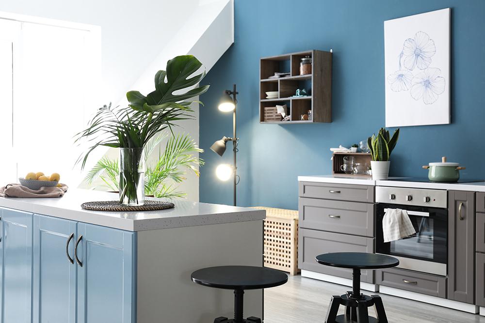 Stylish grey cupboard kitchen with blue walls