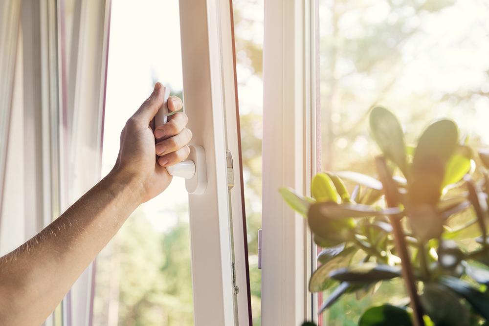 Shutting window