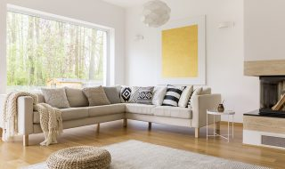 Lounge with light furniture and walls. Lounge with large glass window with woodland view