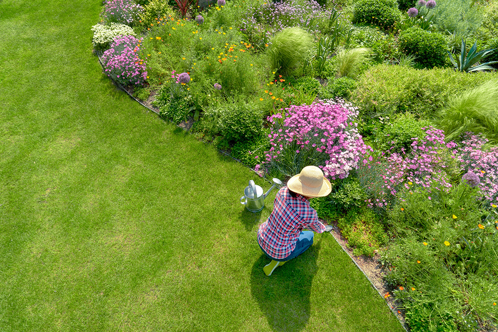 Women gardening with straw hat on. Neatly cut grass and colourful flower beds